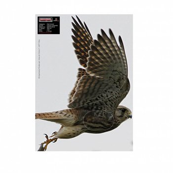 Maximal SMALL ANIMALS 30X40 FLYING FALCON