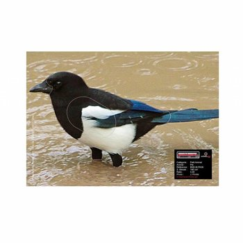 Maximal SMALL ANIMALS 30X40 MAGPIE