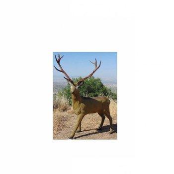 Imago3D 3-D Tier Deer von Imago3D