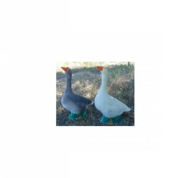 Imago3D 3-D Goose