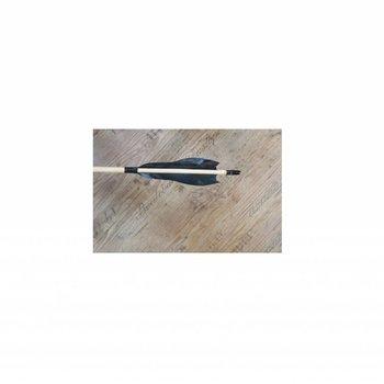 Iguanes.  Zederholz Fertig Pfeil 5/16 oder 11/32 mit 5 Zoll Ray-Feder