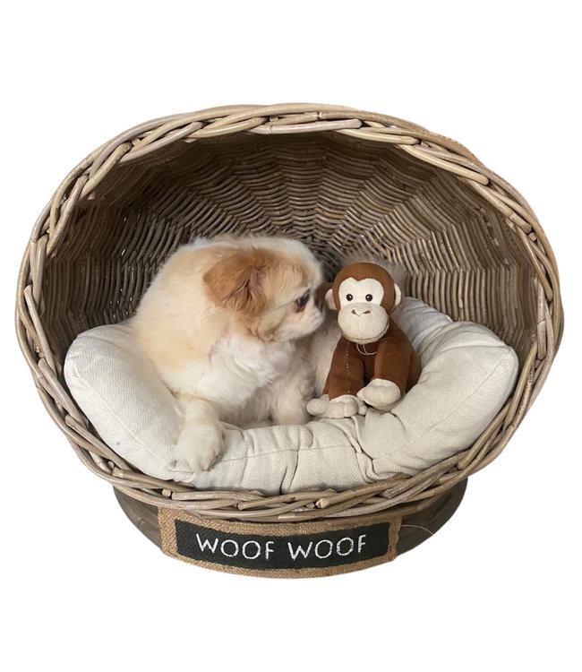 Decomeubel Rattan Hundebett IGLO mit Kissen