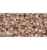 Mudis Mudis® natuurkussenvullingen, in een inlet (25x50) en diverse biologische ingrediënten.