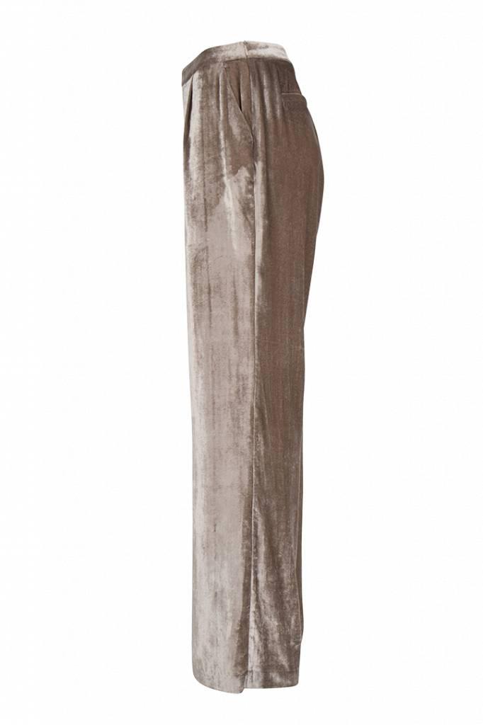 Dante6 Seduce Velvet Pants - Champagne