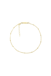 Wildthings Stud Chain Anklet - Gold