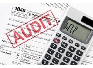 Tax Audit in The Netherlands