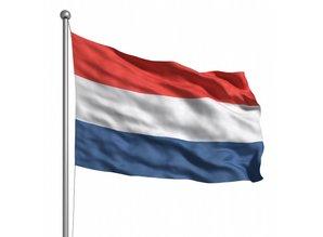 Dutch BV formation
