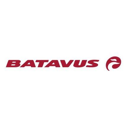 Batavus fiets; veilig, vertrouwd, comfort én design.