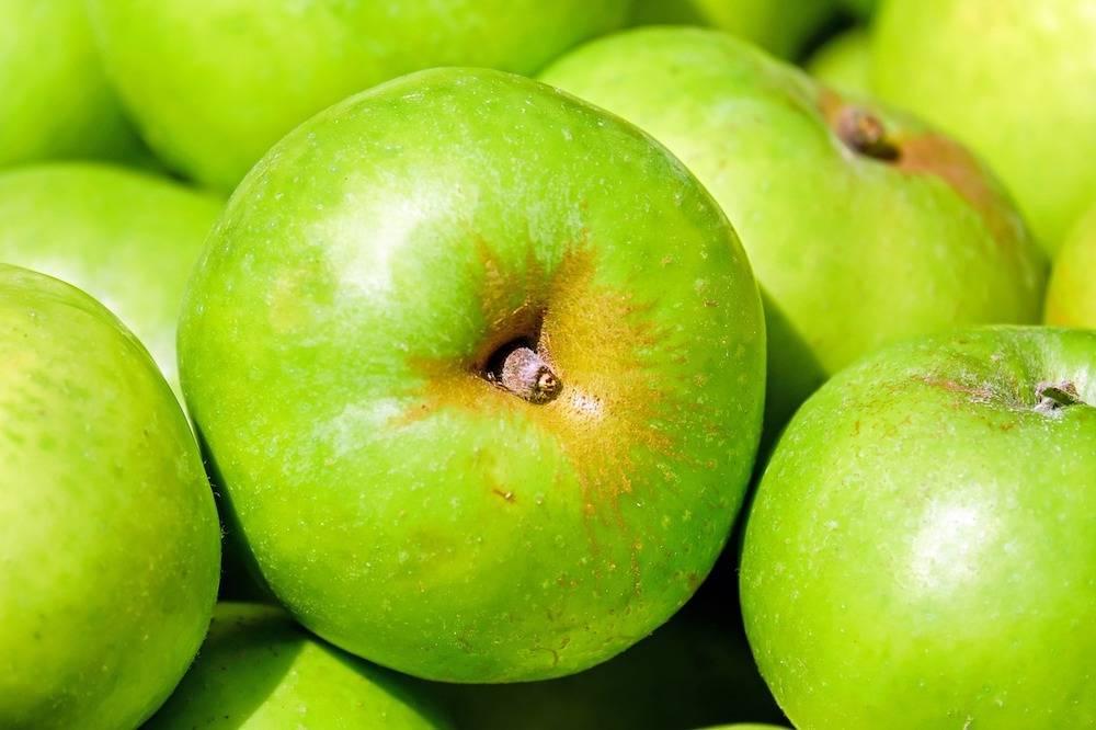 Aminosäuren Ratgeber: Was sind Aminosäuren und ihre Wirkung? Alle Infos über Aminosäuren