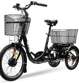 E Bike Lastenrad Pedelec Trike Dreirad