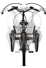 E Bike Lastenrad Pedelec Senioren  Dreirad