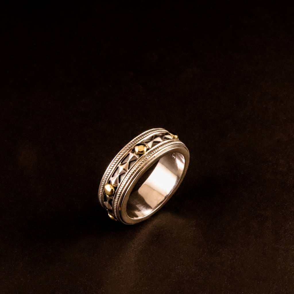 Ring ALONG, zilver-4