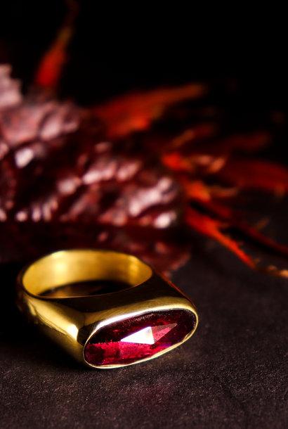 (As)ring GEM, goud met Granaat
