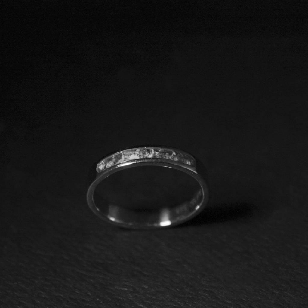 (As)ring DIERBAAR, zilver-4