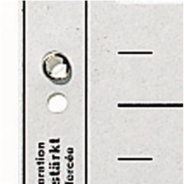 Leitz Trennblätter, DIN A4, Lochung geöst, 100 Stück