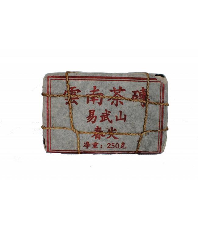 Yiwu Shan Spring Brick (sheng) 1998