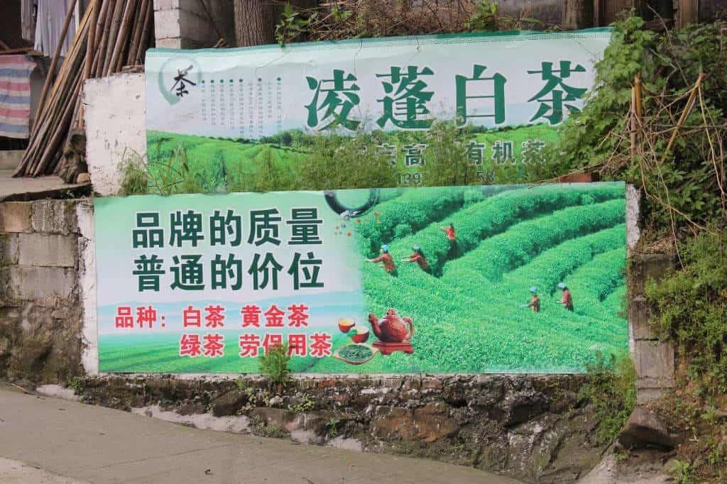 Reise nach Liyang und Tianmuhu
