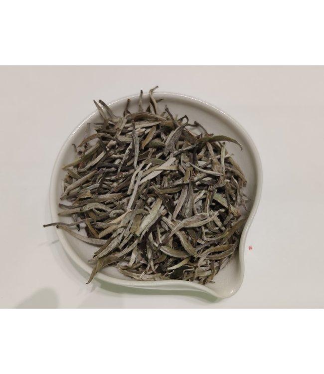 Shudaizi White Tea Shaibai Baimao Yinzhen (Silver Needle) 2019