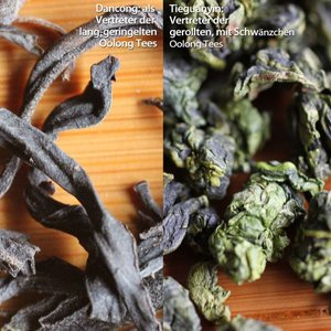Oolong tea knowledge