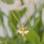 KAYA sieraden Silver children's necklace 'angel' - Copy - Copy - Copy - Copy