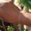 KAYA sieraden Armband 'Bolletjes' kies je materiaal