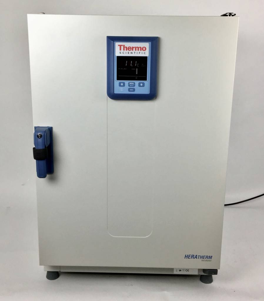Thermo Scientific Thermo Heratherm IMH180-S Advanced Protocol Security Umluft-Brutschrank (178 Liter)