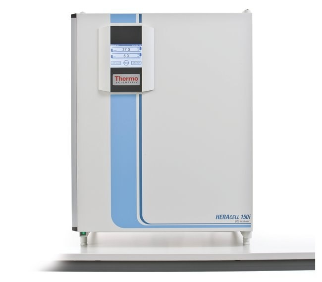 Thermo Scientific Thermo Heracell 150i CO2-Inkubator mit Gasblende