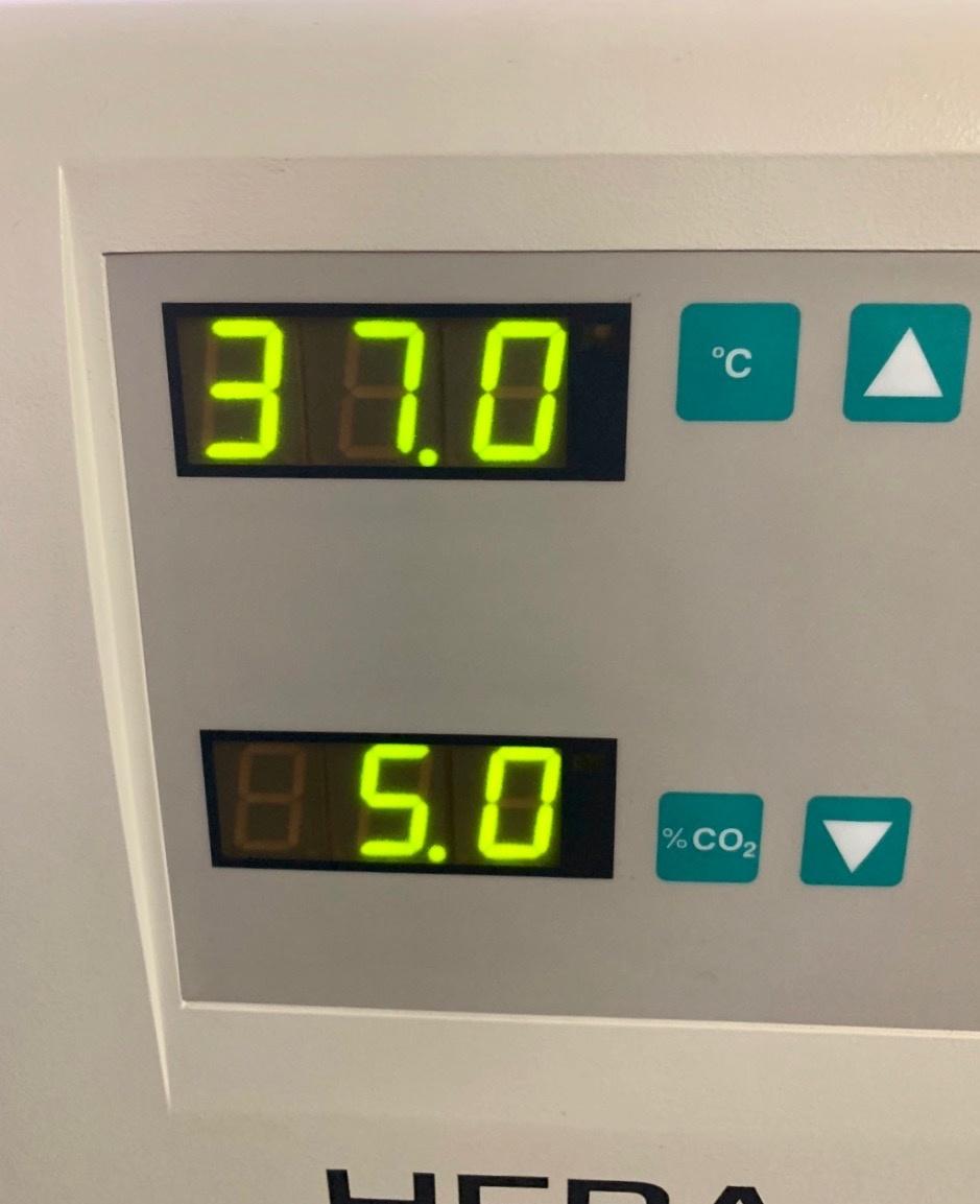 Thermo Scientific Thermo Heracell 150 CO2-Incubator (copper)