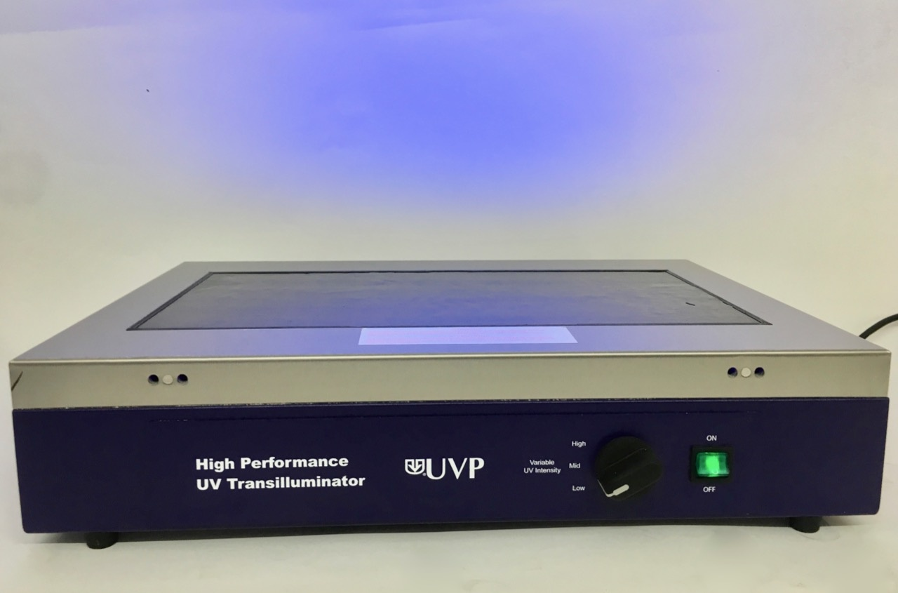 UVP UVP High Performance UV Transilluminator
