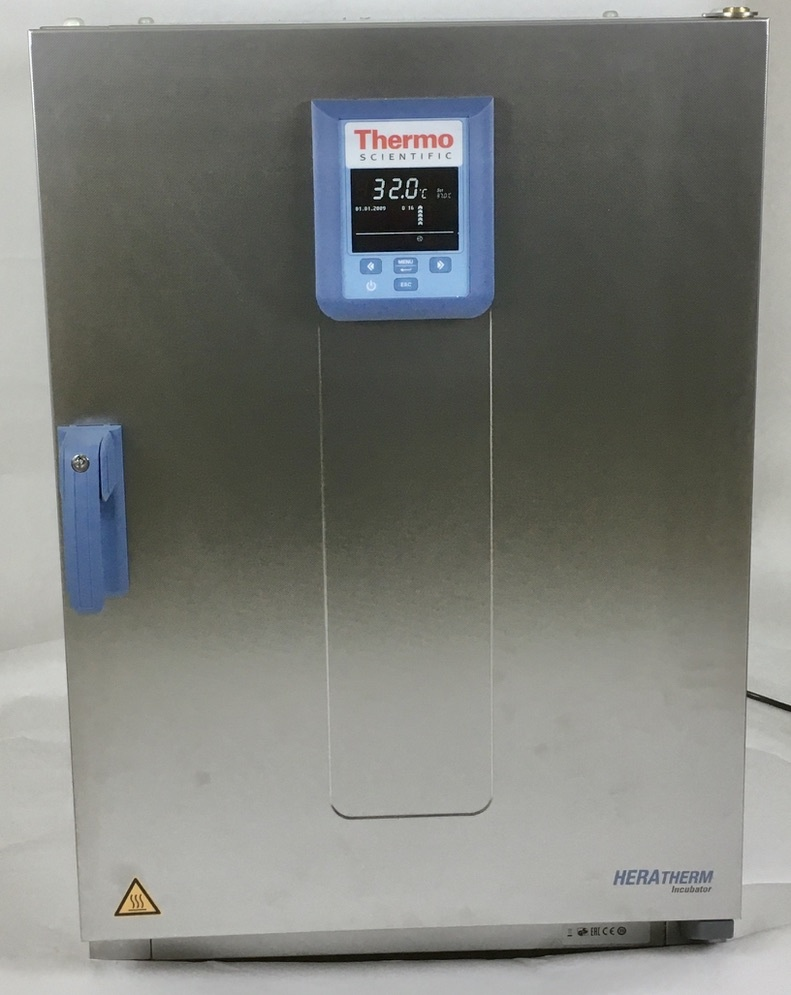 Thermo Scientific Thermo Heratherm IMH180-S SS Umluft-Brutschrank (BJ 2020)