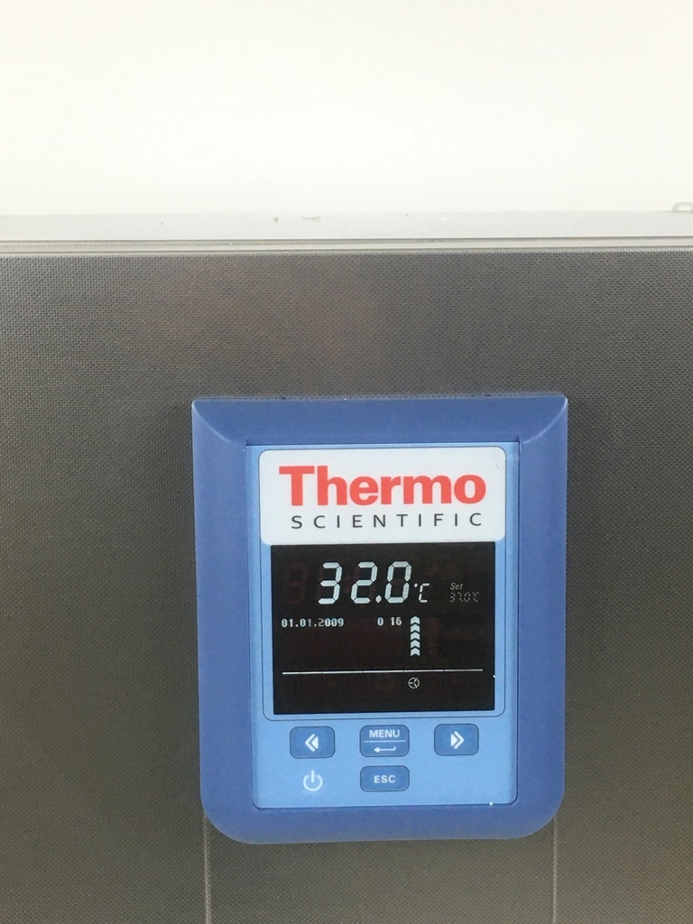 Thermo Scientific Thermo Heratherm IMH180-S SS Microbiological Incubator (2020 model)