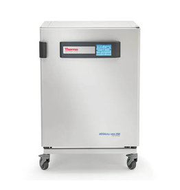 Thermo Scientific Heracell VIOS 250i CO2-Inkubator-Kupfer  (Demo 2020)