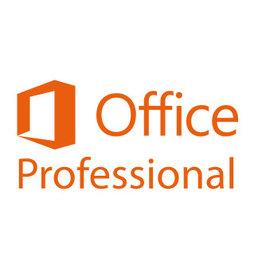 Microsoft Office 2019 Professional Plus für Behörden