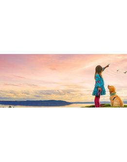 Adobe Photoshop Elements 2021 für Studium, Behörden, Gewerbe und Privat