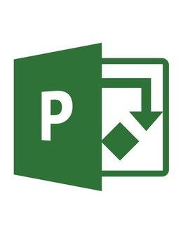 Microsoft Project 2019 Professional für Studium und Privat