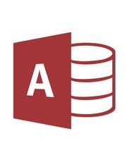 Microsoft Access 2019 für Behörden
