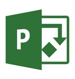 Microsoft Project 2019 Standard für Gewerbe