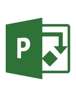 Microsoft Project 2019 Professional für Gewerbe