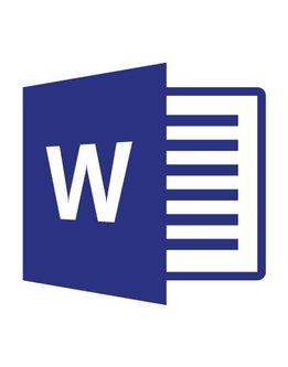 Microsoft Word 2019 für Behörden