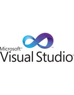 Microsoft Visual Studio 2019 Professional für Behörden
