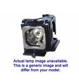 SANYO 610-280-6939 / LMP21J / 610-290-8985 Merk lamp met behuizing