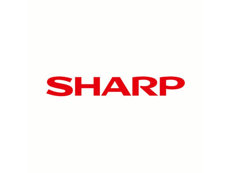 SHARP BQC-XVZ100005 / AN-K12LP Originele lampmodule