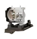 OPTOMA SP.8JR03GC01 / BL-FU280C Merk lamp met behuizing