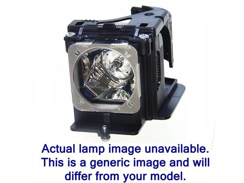 NEC NP26LP / 100013748 Merk lamp met behuizing