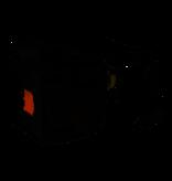 BENQ 5J.JG705.001 Originele lampmodule
