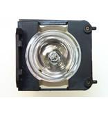 LIESEGANG ZU1202 04 4010 Originele lampmodule
