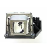 EIKI P8984-1021 Originele lampmodule