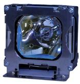 DUKANE 456-206 Originele lamp met behuizing