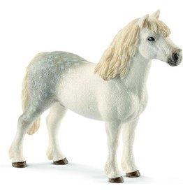 Schleich Welsh Pony Hengst