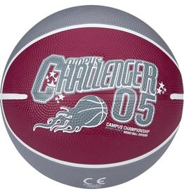 Schreuder Sports New Port Mini Basketbal Print - Paars/Grijs/Wit - 3